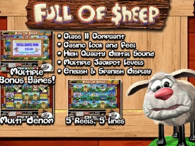 Full of Sheep